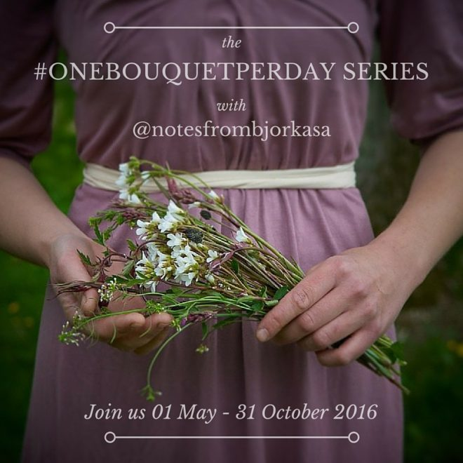 The #onebouquetperday series on Instagram - a daily flower bouquet project by Juliane Strittmatter / Notes from Björkåsa